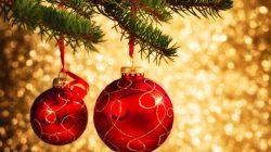 Novogodišnji i Božićni praznici – obaveštenje